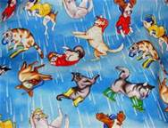 Raining cats and dogs.jpg